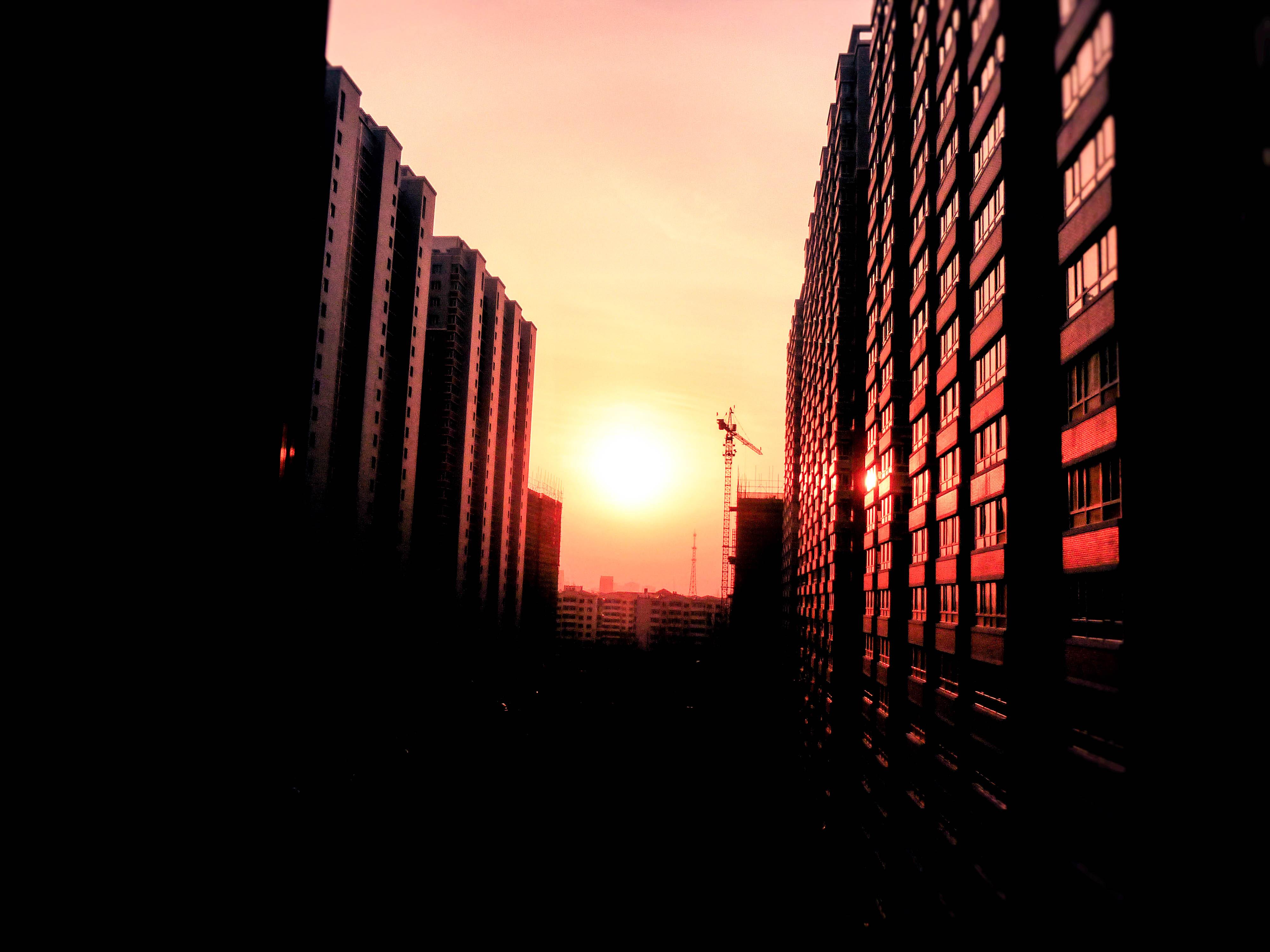 Metallic Sunset